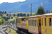 Europe/France/Languedoc-Roussillon/66/Pyrénées-Orientales/Cerdagne:Mont-Louis: le Train jaune de Cerdagne appelé le Train Jaune ou le Canari, car les véhicules arborent les couleurs catalanes, le jaune et le rouge en gare de Mont-Louis La Cabanasse