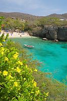 F- Playa Lagun - Taxi Max Curacao Tour - as part of HAL Koningsdam S. Caribbean Cruise, Curacao