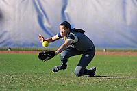 FIU Softball v. Memphis (2/13/15)