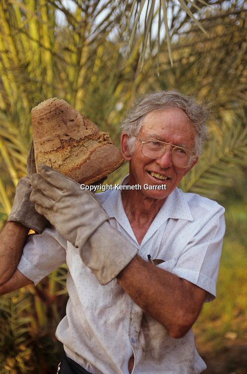 Egypt's Old Kingdom; Egypt, Ed Wood, Sourdough, bakery, reconstruction, Mark Lehner