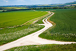 White pathways on chalk downland Allington Down, Wiltshire, England