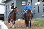 HOT SPRINGS, AR - APRIL 14: Trainer Steven Asmussen headed back to the barn after the morning workouts before the Arkansas Derby at Oaklawn Park on April 14, 2018 in Hot Springs, Arkansas. (Photo by Justin Manning/Eclipse Sportswire/Getty Images)