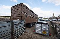 Livestock transport at a market<br /> &copy;Tim Scrivener Photographer 07850 303986<br />      ....Covering Agriculture In The UK....