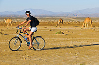 French cyclist Charlie biking in the Eastern Desert