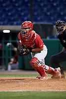 Palm Beach Cardinals catcher Jose Godoy (27) during the second game of a doubleheader against the Clearwater Threshers on April 13, 2017 at Spectrum Field in Clearwater, Florida.  Palm Beach defeated Clearwater 1-0.  (Mike Janes/Four Seam Images)