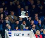 28.04.2019 Rangers v Aberdeen: I'm outta here!