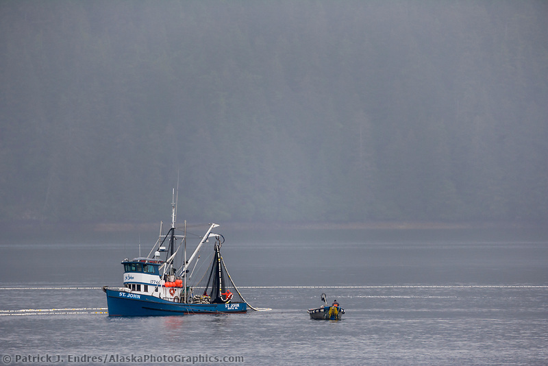 Commercial fishing purse seine vessels in Peril Straits off Branof Island in southeast Alaska.