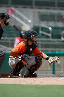 Baltimore Orioles catcher Matthew Beaird (61) waits to receive a pitch in front of home plate umpire Trevor Danneggar during a Florida Instructional League game against the Boston Red Sox on September 21, 2018 at JetBlue Park in Fort Myers, Florida.  (Mike Janes/Four Seam Images)