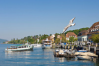 DEU, Deutschland, Baden-Wuerttemberg, Ueberlingen am Bodensee: Seepromenade und Schiffsanlegestelle | DEU, Germany, Baden-Wuerttemberg, Ueberlingen at Lake Constance: seaside promenade and landing stage