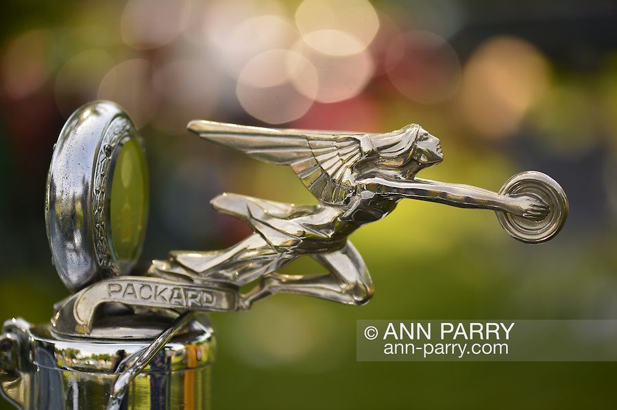 Old Westbury, New York, U.S. - June 1, 2014 - Goddess of Speed hood ornament with radiator gauge, on a 1928 Packard 443 limousine owned by MARIO IASPARO of CENTEREACH, is an entry at the Antique and Collectible Auto Show held on the historic grounds of elegant Old Westbury Gardens in Long Island, and sponsored by Greater New York Region AACA Antique Automobile Club of America.