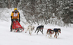 3 Bear Sled Dog Races
