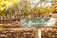 Sign at the entrance Truffiere de la Bergerie (Truffière) truffles farm Ste Foy de Longas Dordogne France