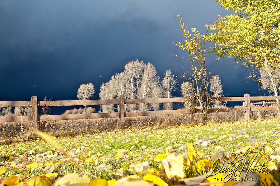 Autumn Thunderstorm, Jackson Hole, Wyoming