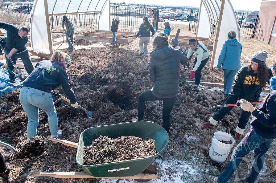 NWA Democrat-Gazette/ANTHONY REYES &bull; @NWATONYR<br /> Volunteers spread mulch Monday, Jan. 18, 2016 in a high tunnel at Bayyari Elementary School in Springdale. The volunteers, mostly from Food Corp. spend a portion of their day speeding mulch and building planting tables. The high tunnel was built with the help of University of Arkansas graduate students and should be completed by early February. The volunteers were also working Monday for the Martin Luther King Jr. Day of Service.