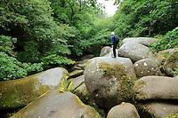 France, Côtes-d'Armor (22), vallée du Blavet,  Trémargat, gorges de Toul-Goulic, le chaos granitique // France, Cotes d'Armor, Blavet Valley, Tremargat, gorges of Toul Goulic, the granitic chaos