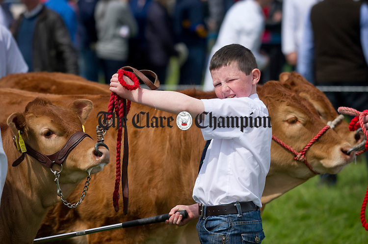 Daniel Moloney from Ardnacrusha waiting for the judge's inspection during the Newmarket Show at the weekend. Photograph by Declan Monaghan