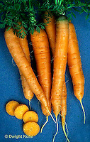HS12-020b  Carrot - just harvested, Artist variety