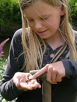 Mädchen, Kind mit Regenwurm, bei der Gartenarbeit, beim Umgraben mit Spaten, Tauwurm, Lumbricus spec., common earthworm, earthworm, lob worm, dew worm,