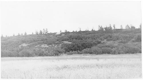 Ute Mine coal chute (slightly center of left) above RGS roadbed near Ute Junction taken from old road.<br /> RGS  Ute Junction, CO  Taken by Maxwell, John W. - 8/3/1961