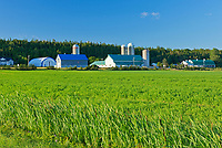Farms and crop<br />