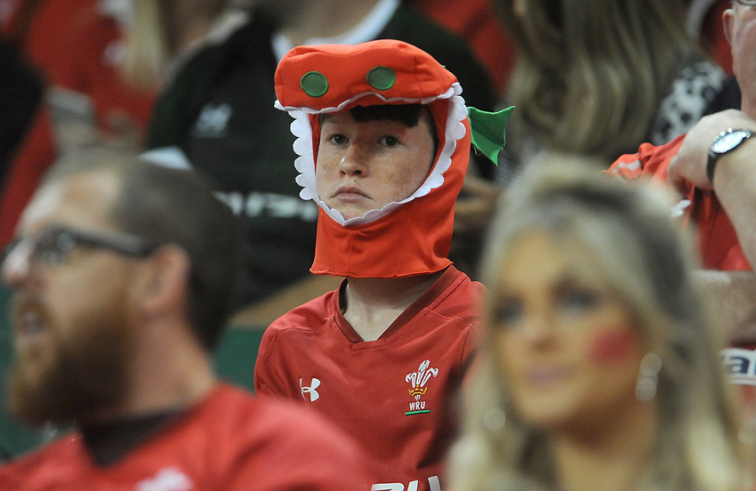 Wales fans prior to kick off<br /> <br /> Photographer Ian Cook/CameraSport<br /> <br /> 2019 Under Armour Summer Series - Wales v Ireland - Saturday 31st August 2019 - Principality Stadium - Cardifff<br /> <br /> World Copyright © 2019 CameraSport. All rights reserved. 43 Linden Ave. Countesthorpe. Leicester. England. LE8 5PG - Tel: +44 (0) 116 277 4147 - admin@camerasport.com - www.camerasport.com