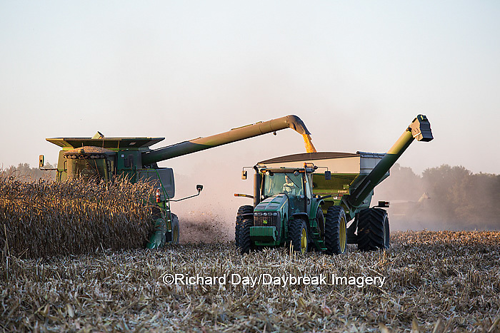 63801-06615 John Deere combine harvesting corn while unloading corn into wagon, Marion Co., IL