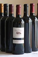 Bottle of Chateau d'Aydie cuvee Ode d'Aydie Madiran France