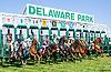 Virgo Rising winning at Delaware Park on 6/18/16