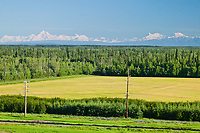 Alaska mountain range, university of Alaska experimental agricultural field, Fairbanks, Alaska