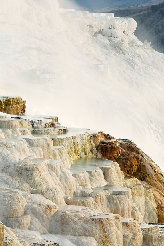 Canary Spring travertine terraces at Mammoth Hot Springs, Yellowstone National Park, Wyoming, USA