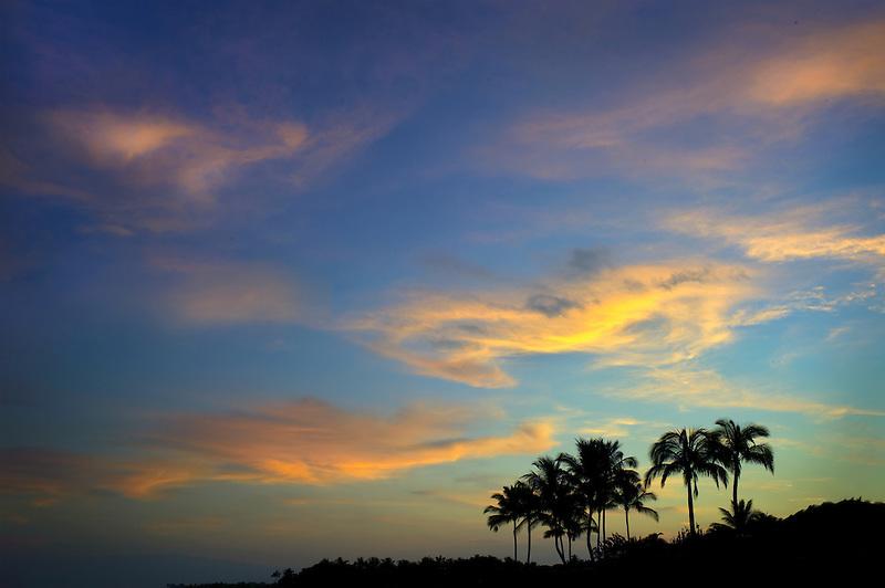 Sunrise and palm trees. Hawaii, The Big Island.
