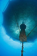 3,000-cubic-meter submersible fish pen installed in open ocean just off Kona Coast to raise Kona Kampachi, Hawaiian yellowtail, aka almaco jack or kahala, Seriola rivoliana, Kona Blue Water Farms, Big Island, Hawaii, Pacific Ocean