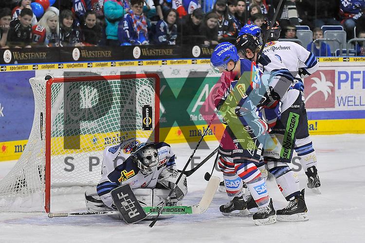 Mannheims Alexander Ackermann (Nr.81) gegen Straubings Marcel Brandt (Nr.92) und Straubings Jason Bacasihiua (Nr.33)  beim Spiel in der DEL, Adler Mannheim - Straubing Tigers.<br /> <br /> Foto &copy; Ice-Hockey-Picture-24 *** Foto ist honorarpflichtig! *** Auf Anfrage in hoeherer Qualitaet/Aufloesung. Belegexemplar erbeten. Veroeffentlichung ausschliesslich fuer journalistisch-publizistische Zwecke. For editorial use only.