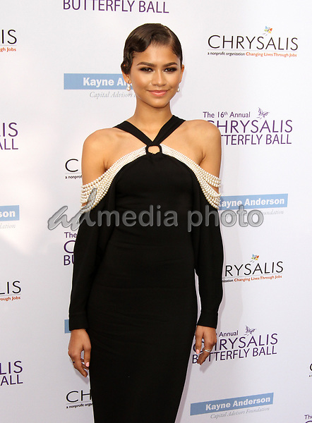 3 June 2017 - Los Angeles, California - Zendaya. 16th Annual Chrysalis Butterfly Ball held at a Private Residence. Photo Credit: AdMedia