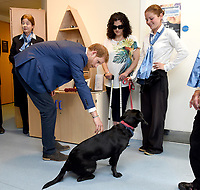 Prince Harry visits Headway in Ipswich