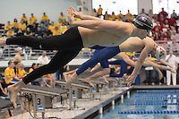 Men's 2008  Big Ten Swimming & Diving Championships held at the University of Michigan. ..