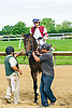 The Tortoise winning at Delaware Park on 6/8/17