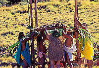 Men of Hawaiian ancestry hold up an offering of taro during a ceremony in Kawaihae on the Big Island of Hawaii. Taro is revered as a food staple of the Polynesian people.