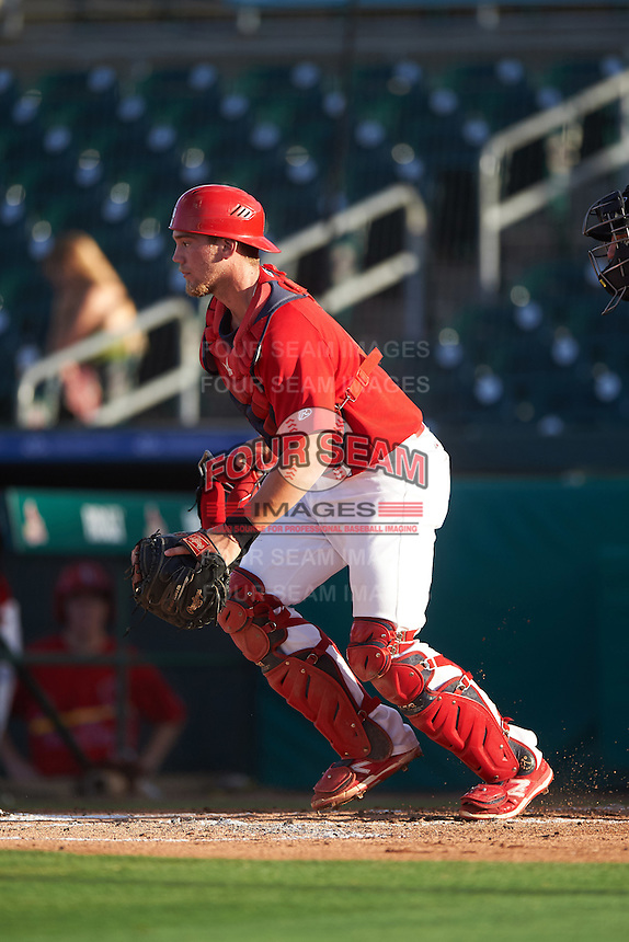 Palm Beach Cardinals catcher Steve Bean (11) during a game against the Jupiter Hammerheads  on August 12, 2016 at Roger Dean Stadium in Jupiter, Florida.  Jupiter defeated Palm Beach 9-0.  (Mike Janes/Four Seam Images)