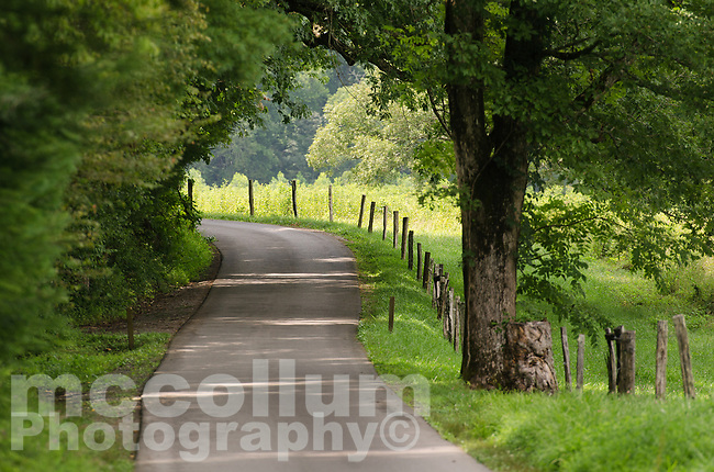 Michael McCollum<br /> 8/8/17<br /> Cades Cove Loop Road in the Great Smoky Mountains National Park, Tennessee.