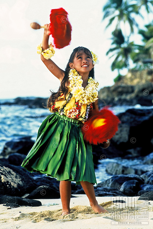 Beautiful young Hawaiian girl (age 7)with uli uli (rattles), plumeria leis and ti leaf skirt performing a hula