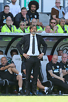 Derby County Manager Phillip Cocu during Derby County vs West Bromwich Albion, Sky Bet EFL Championship Football at Pride Park Stadium on 24th August 2019