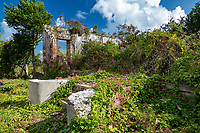 Ruins at America Hill<br /> Virgin Islands National Park<br /> St. John<br /> US Virgin Islands