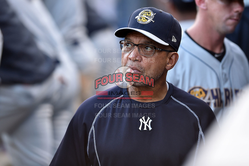 New York Yankees special assistant to the general manager Reggie Jackson during a game against the Asheville Tourists on June 13, 2015 in Asheville, North Carolina. The Tourists defeated the RiverDogs 10-6. (Tony Farlow/Four Seam Images)