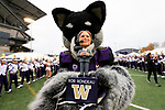 The University of Washington football team plays WSU in the Apple Cup in Seattle on November 25, 2017. (Photography by Scott Eklund/Red Box Pictures)