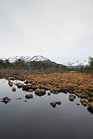Reserva natural Cerro Aarkén del Hotel Arakur. Ushuaia, tierra del Fuego, Patagonia, Argentina
