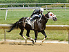 Bellissima Luna winning at Delaware Park on 6/25/12