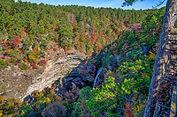 Autumn at Cedar Falls - A cedar fall drops down over the cliff where you can see a variety of colorful trees on it journey to the river below for some wonderful scenery.  This scenic area native trees contains an abundance of the many cedars, and pines like the southern yellow pine but also included are the sugar and red maples, the oaks, black hickory along with a pop of red from the sweet gum tree through out the hill side in the fall season.  The waters flow from upstream where Lake Bailey is dammed in the Jean Petit Park over the cliff.