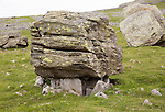 Norber erratics glacial deposition, Austwick, Yorkshire Dales national park, England, UK