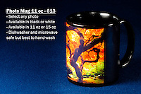 "Coffee Mug 11oz Black - Have any photo from Chris Bidleman Photography collection on your cup.  Available in white mug too.<br /> <br /> To order, select your photo from the library, pick the ""buy"" button, and go to the ""products"" tab to select your size and color."